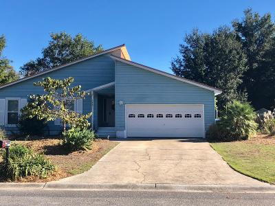 Stonefield Single Family Home For Sale: 1447 Putnam Drive