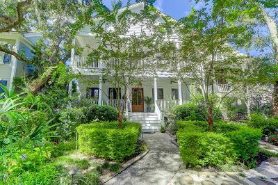 Charleston Single Family Home For Sale: 251 Delahow Street