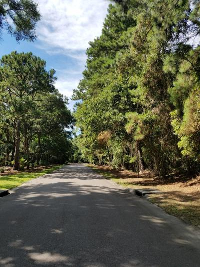 Johns Island Residential Lots & Land For Sale: 2877 Old Drake Drive