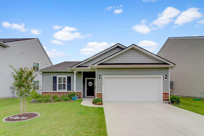 Charleston County Single Family Home For Sale: 2844 Conservancy Lane