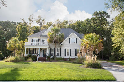 Mount Pleasant Single Family Home For Sale: 2465 Darts Cove Way