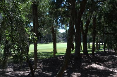 Johns Island Residential Lots & Land For Sale: 2571 High Hammock Road