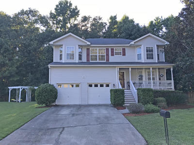 Charleston Single Family Home For Sale: 681 Edentree Place