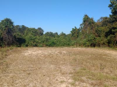 Charleston Residential Lots & Land For Sale: Rosebush Lane