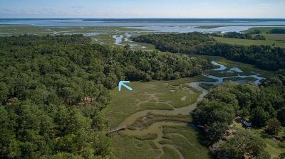 Edisto Island SC Residential Lots & Land For Sale: $109,000