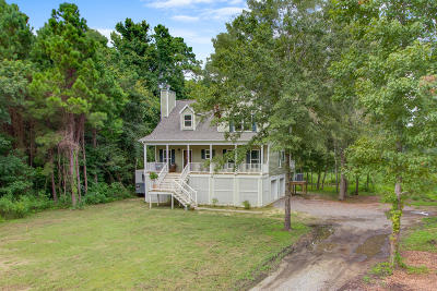 Charleston Single Family Home For Sale: 633 Daniel Whaley Drive