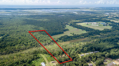 Johns Island Residential Lots & Land For Sale: 4665 River Road