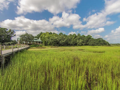 Johns Island Residential Lots & Land For Sale: 1430 McPherson Landing