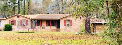 Walterboro Single Family Home For Sale: 87 Sandy Dam Lane