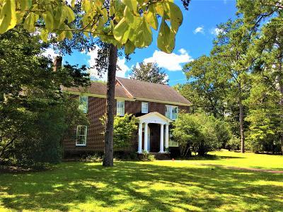 Walterboro Single Family Home For Sale: 810 Hampton Street