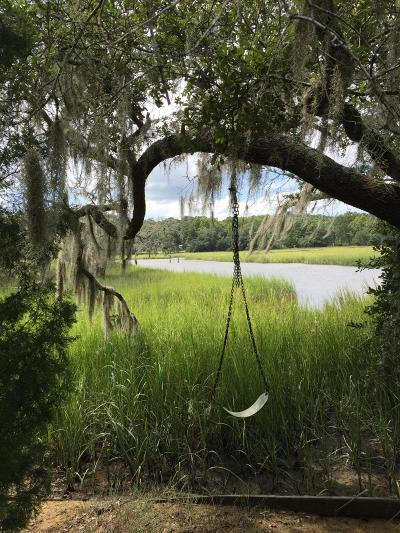 Johns Island Residential Lots & Land For Sale: 1 Pine Creek Road