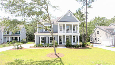 Summerville Single Family Home For Sale: 4026 Cascades Thrust
