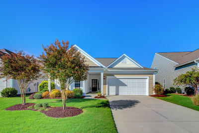 Summerville Single Family Home For Sale: 549 Tranquil Waters Way