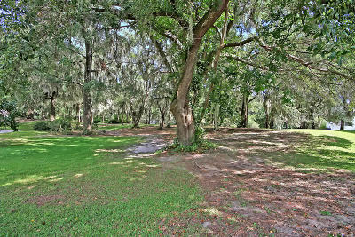 Johns Island Residential Lots & Land For Sale: 4139 Nature View Circle