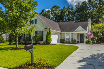 Mount Pleasant Single Family Home For Sale: 2652 Palmetto Hall Boulevard