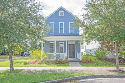 Summerville Single Family Home For Sale: 401 Verbena Avenue