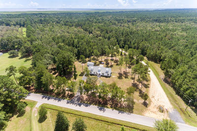 Awendaw, Wando, Cainhoy, Daniel Island, Isle Of Palms, Sullivans Island Single Family Home For Sale: 7267 Doar Road