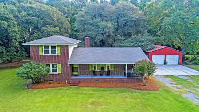 Johns Island Single Family Home For Sale: 3953 Humbert Road