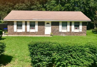 Summerville Single Family Home Contingent: 217 Shamrock Drive