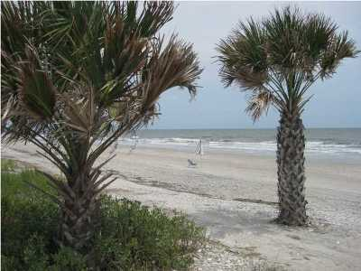 Edisto Island SC Residential Lots & Land For Sale: $160,200
