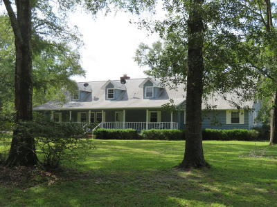 Walterboro Single Family Home Contingent: 461 Sandy Springs Circle