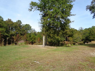Residential Lots & Land For Sale: 718 Main Road