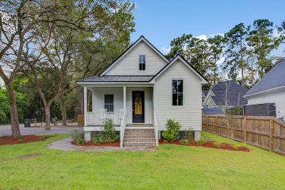 Summerville Single Family Home For Sale: 438 Simmons Avenue
