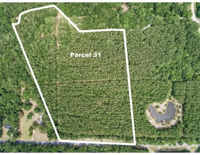 Wadmalaw Island Residential Lots & Land For Sale: Pawlett Blake Lane #Parcel 3