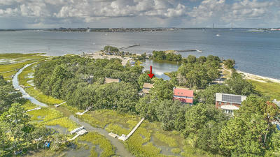 Charleston Single Family Home For Sale: 653 Wampler Drive