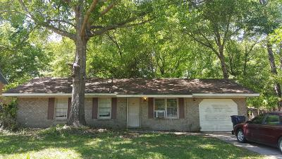 Summerville Single Family Home For Sale: 141 Larson Drive