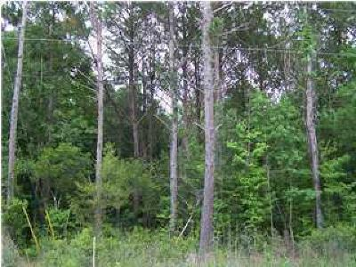 Johns Island Residential Lots & Land For Sale: Bear Swamp Road