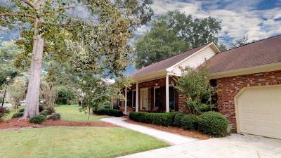 Summerville Single Family Home For Sale: 201 Fort Street
