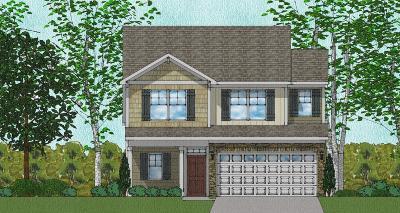 Charleston SC Single Family Home For Sale: $311,316