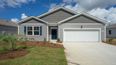 Ladson Single Family Home For Sale: 9716 Flooded Field Drive