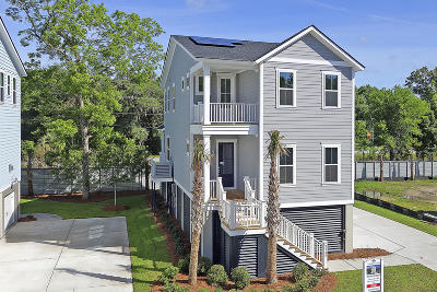 Mount Pleasant SC Single Family Home For Sale: $483,040