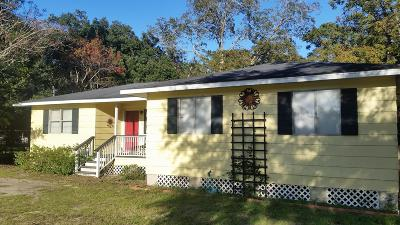 Mount Pleasant Single Family Home For Sale: 646 Spark Street