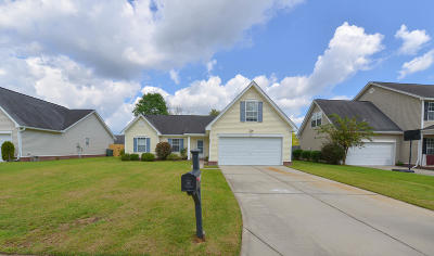 Single Family Home For Sale: 244 Mallory Drive