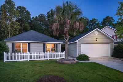 Summerville Single Family Home For Sale: 158 Jupiter Lane