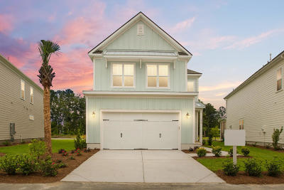 Mount Pleasant Single Family Home For Sale: 2906 Clearwater Drive