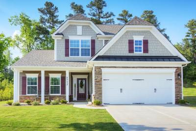 Moncks Corner Single Family Home For Sale: 118 Lakelyn Road