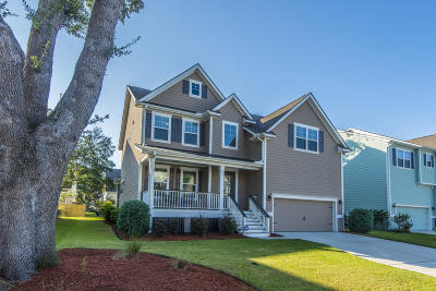 Mount Pleasant Single Family Home For Sale: 2300 Skyler Drive