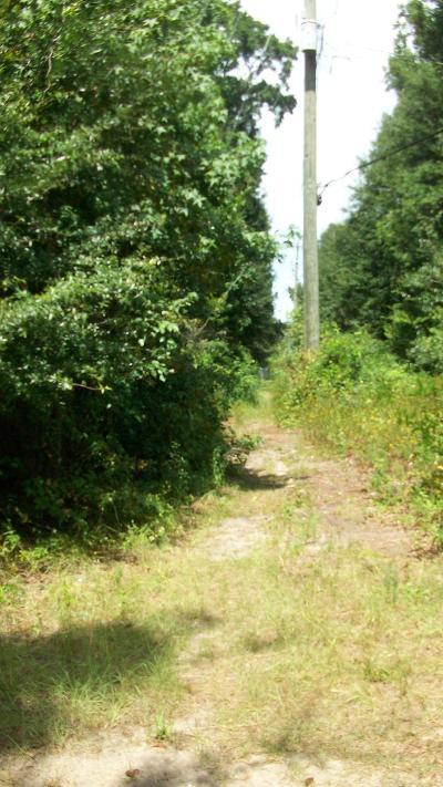 Residential Lots & Land For Sale: N Dan Rd Road