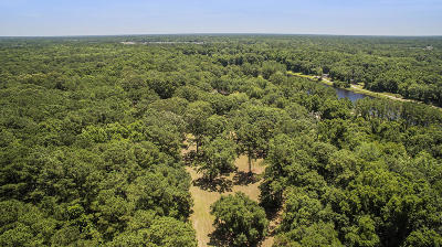 Johns Island Residential Lots & Land For Sale: Lot 14 Michelle Lane