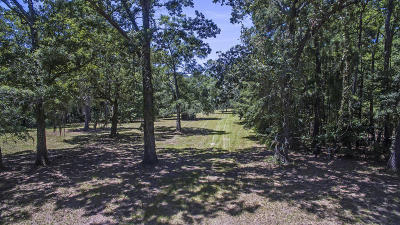 Johns Island Residential Lots & Land For Sale: Lot 3 Michelle Lane