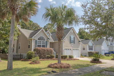 Johns Island Single Family Home For Sale: 3030 Penny Lane