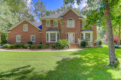 Summerville Single Family Home Contingent: 125 Delaney Circle