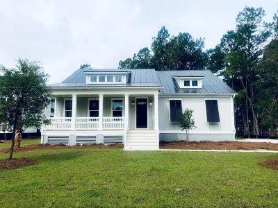 Mount Pleasant Single Family Home For Sale: 489 Woodspring Road