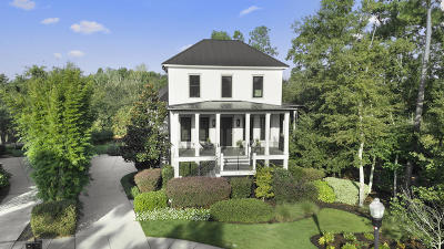 Charleston Single Family Home For Sale: 1146 Oak Overhang Street
