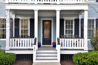 Mount Pleasant Single Family Home For Sale: 1479 Blue Cascade Drive
