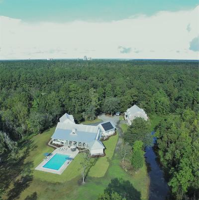 Moncks Corner Single Family Home For Sale: 3001 Bushy Park Road
